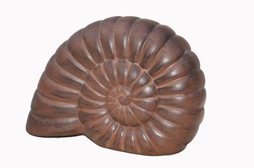 Muschel Dekoration - Braun