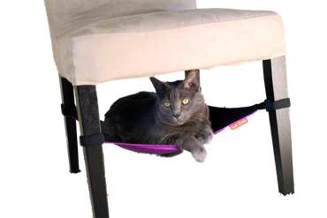 Cat Crib Purple – Bild 1