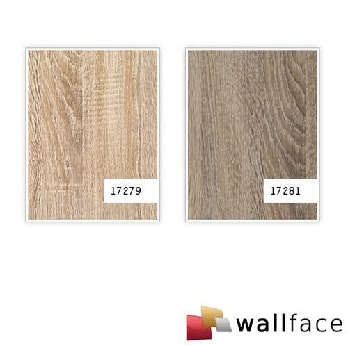1 MUSTERSTÜCK S-17281-SA WallFace OAK TREE DARK Deco Collection | Wandpaneel MUSTER in ca. DIN A4 Größe – Bild 3