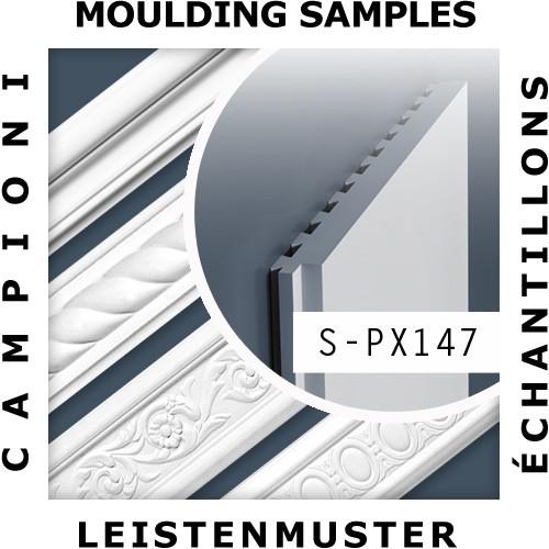 1 MUSTERSTÜCK S-PX147 Orac Decor AXXENT | MUSTER Wandleiste Stuckleiste ca. 10 cm lang – Bild 2