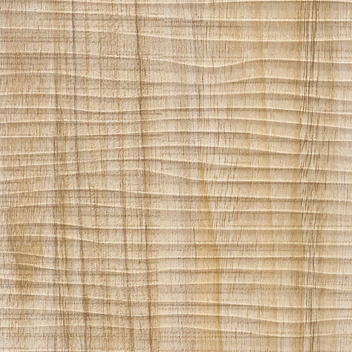 1 PIEZA DE MUESTRA S-19029-SA WallFace MAPLE ALPINE Wood Collection | Muestra panel de pared en tamaño aprox DIN A4 – Imagen 2