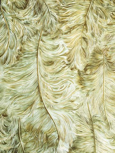 Exclusive luxury wallpaper wall Profhome 822202 vinyl wallcovering embossed with feather pattern shiny olive gold green-brown white 5.33 m2 (57 ft2) – Bild 1