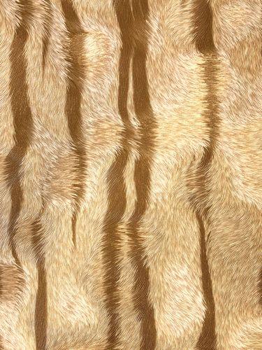 Carta da parati di lusso Profhome 822602 Carta da parati in vinile goffrata strisce di tigre lucida beige bianco-crema bronzo 5,33 m2 – Bild 1