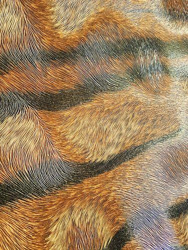 Exklusive Luxus Tapete Profhome 822605 Vinyltapete geprägt mit Tigerstreifen glänzend braun beige schwarz 5,33 m2 – Bild 2