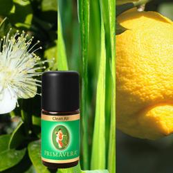 Primavera Wellness Relax Duftmischungen Düftöle 100% naturreine ätherische Öle – Bild 4