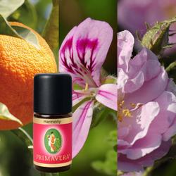 Primavera Wellness Relax Duftmischungen Düftöle 100% naturreine ätherische Öle – Bild 6