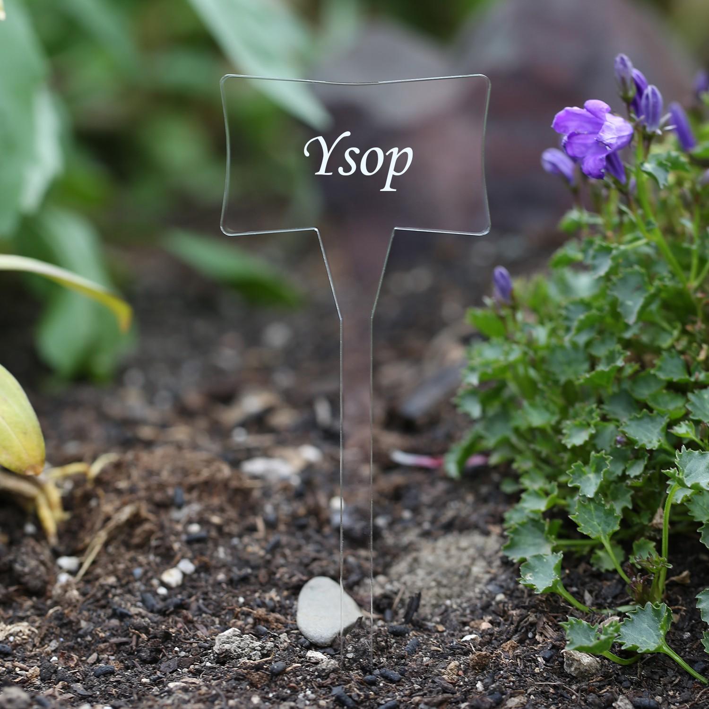 Acrylglas Pflanzschilder Slave farblos - Gartenstecker, Kräuterschilder, Pflanzenstecker - Auswahl + Wunschname