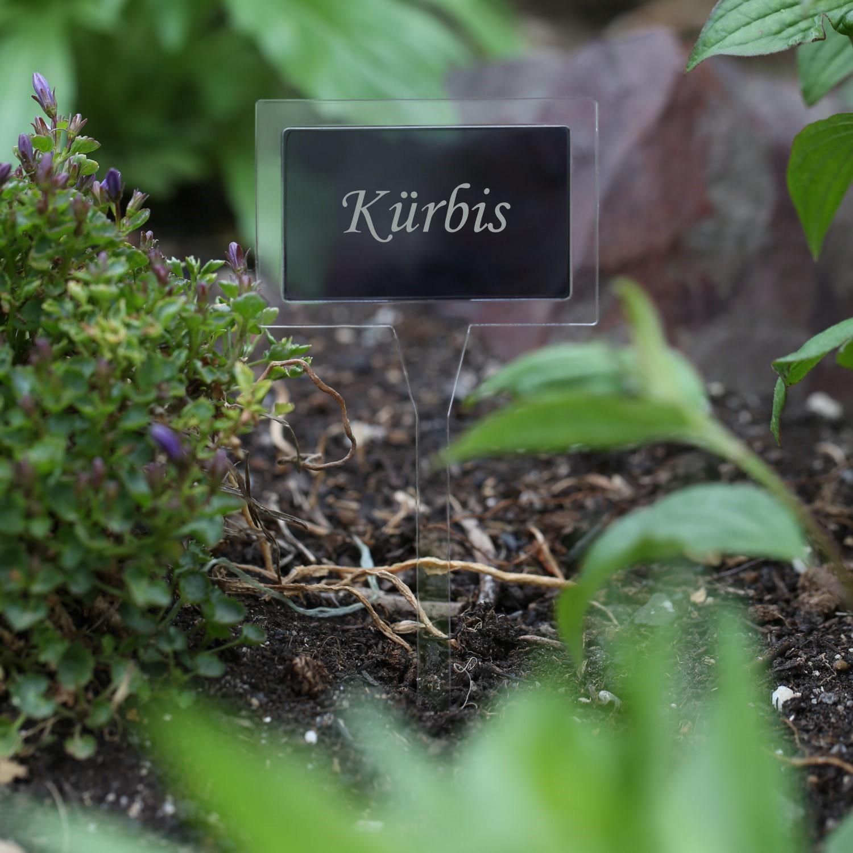 Plexiglas® Pflanzschilder Gartenstecker Dual Eckig farblos+grau transparent