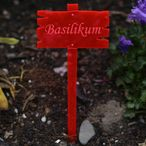 Acrylic glass plant signs wooden board optics neon red transparent fluorescent – weatherproof and elegant, herbs signs, plant plugs - many plant names or own text