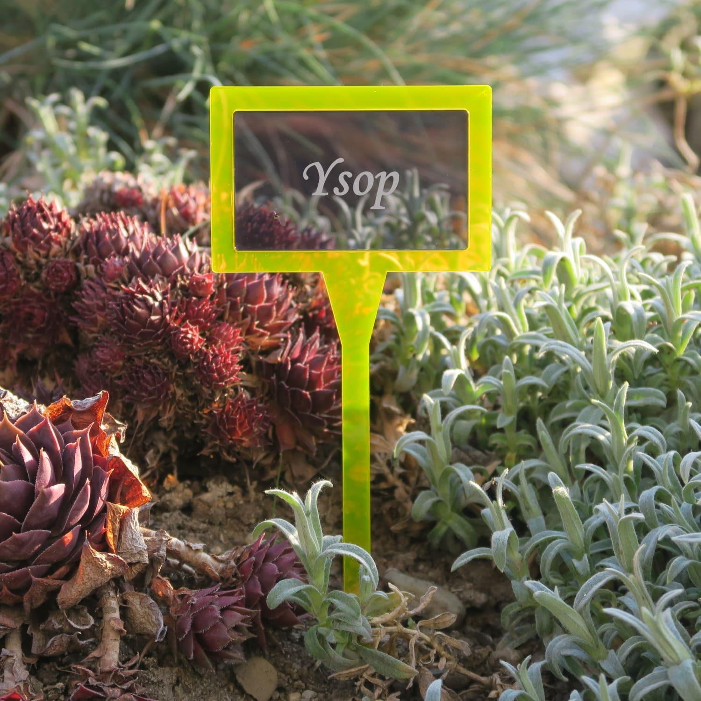 Plexiglas® Pflanzschild Pflanzenstecker Dual Eckig neonorange+grau transparent