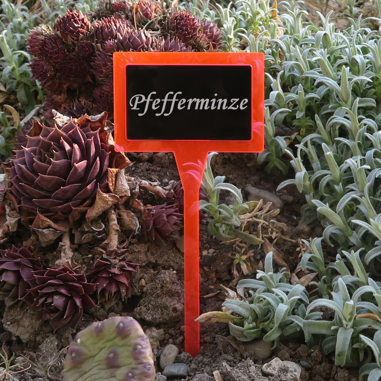 Plexiglas® Pflanzschild Pflanzenstecker Dual Eckig neonrot+schwarz