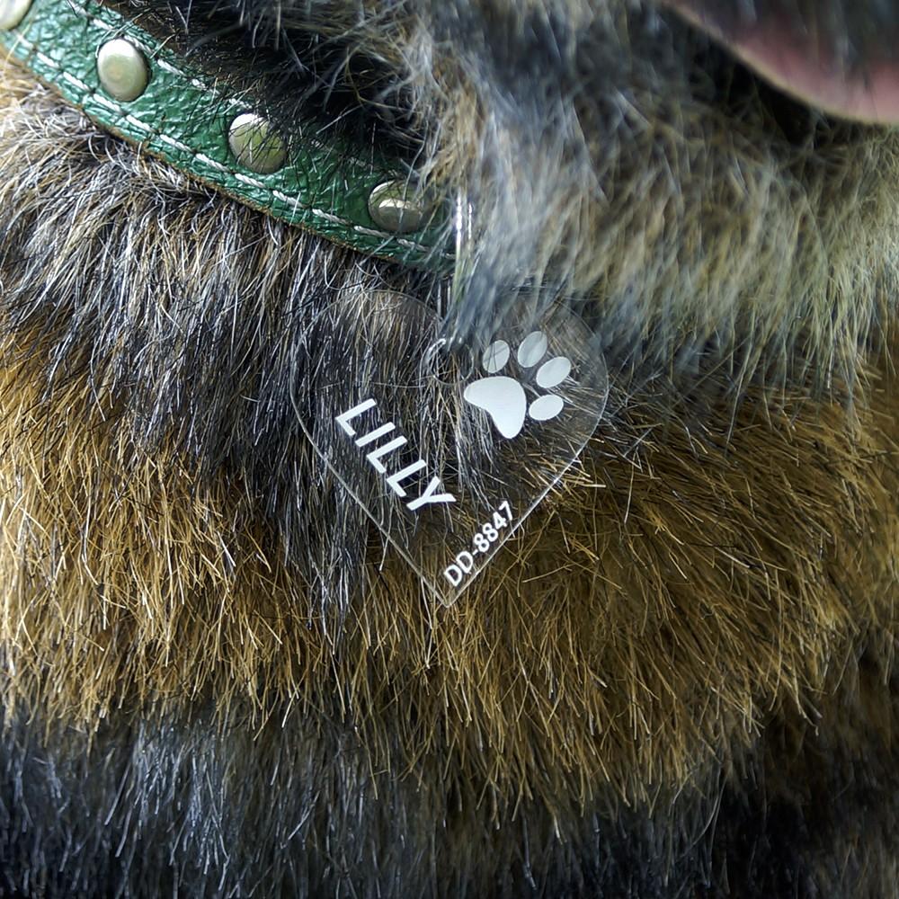 Plexiglas® Hundemarken individuell graviert Acrylglas Anhänger Namensschilder