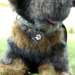 Plexiglas® Hundemarken individuell graviert Acrylglas Anhänger Namensschilder – Bild 12