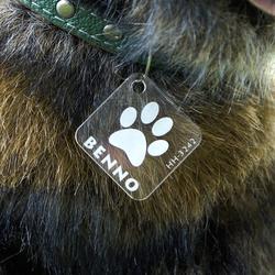 Plexiglas® Hundemarken individuell graviert Acrylglas Anhänger Namensschilder – Bild 5