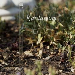 Acrylglas Pflanzschilder Fahne farblos - Auswahl + Wunschname - Gartenstecker, Kräuterschilder, Pflanzenstecker – Bild 13