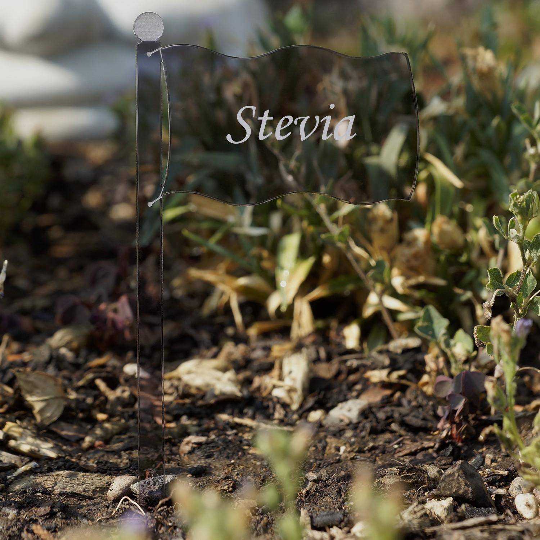 Acrylglas Pflanzschilder Fahne grau transparent - Auswahl + Wunschname - Gartenstecker, Kräuterschilder, Pflanzenstecker