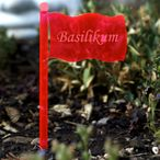 Acrylic glass plant signs flag neon red transparent fluorescent - many plant names or own text - weatherproof and elegant, herbs signs, plant plugs