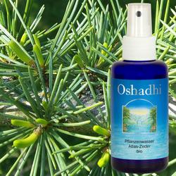 Oshadhi 100ml Hydrolate - Duftwasser - Blütenwasser - Pflanzenwasser 001
