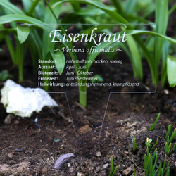 Acrylglas Kräuter Pflanztafel Eckig farblos - Gartenstecker Kräuterschilder – Bild 12