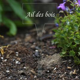 Acrylique très élégant Enseignes d´herbes, transparent, clairement, incolore - nom de plante différent ou propre texte