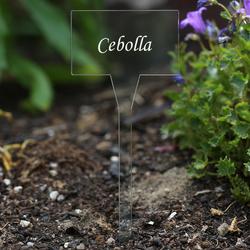 Acrílico plantar signos cuadrado,tra(n)sparente, claro, aburrido - diferente nombre de la planta o poseer el texto – Bild 14