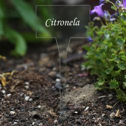 Acrílico plantar signos cuadrado,tra(n)sparente, claro, aburrido - diferente nombre de la planta o poseer el texto – Bild 17