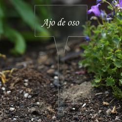 Acrílico plantar signos cuadrado,tra(n)sparente, claro, aburrido - diferente nombre de la planta o poseer el texto – Bild 4