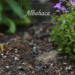 Acrílico plantar signos cuadrado,tra(n)sparente, claro, aburrido - diferente nombre de la planta o poseer el texto – Bild 7