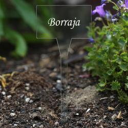 Acrílico plantar signos cuadrado,tra(n)sparente, claro, aburrido - diferente nombre de la planta o poseer el texto – Bild 10