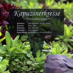 Acrylglas Kräuter Pflanztafel Eckig grau transp. - Gartenstecker Kräuterschilder – Bild 17