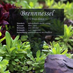 Acrylglas Kräuter Pflanztafel Eckig grau transp. - Gartenstecker Kräuterschilder – Bild 9