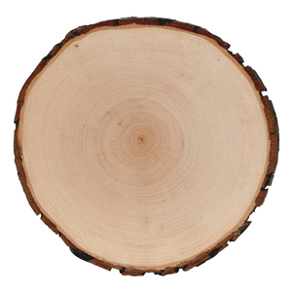 Rindenbrett Esche rund - Rindenscheibe Baumscheibe geschliffen Holzbrett