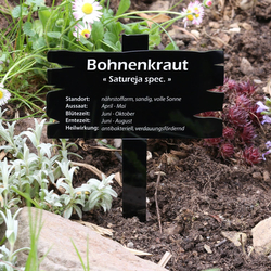 Plexiglas® Kräuter Pflanztafel Holzbrettoptik schwarz - Kräuterschilder – Bild 7