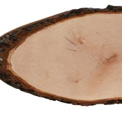Riss Holzscheibe Esche oval - Rindenscheibe Baumscheibe geschliffen Holzbrett – Bild 3