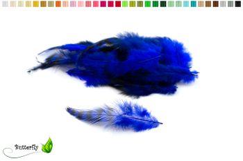 20 Hahnenfedern CHINCHILLA ca. 10-15cm – Bild 8