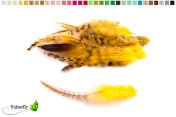 20 Hahnenfedern CHINCHILLA ca. 10-15cm – Bild 3