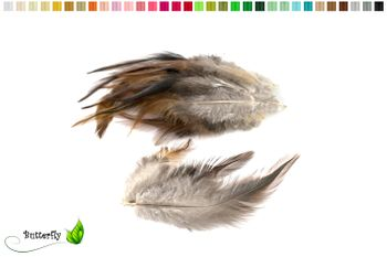 20 Hahnenfedern DACHS ca. 10-15cm – Bild 4