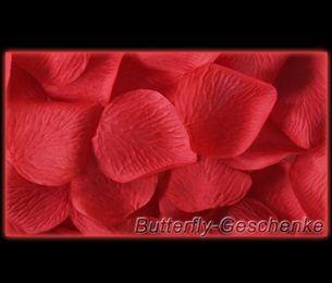 Rosenblätter – Bild 9