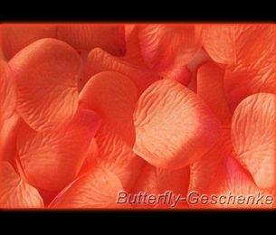 Rosenblätter – Bild 6