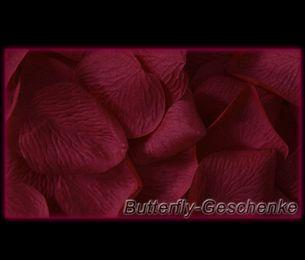 Rosenblätter – Bild 10