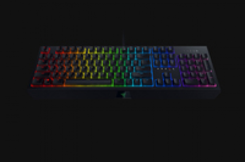 RAZER Blackwidow Mechanische Gaming Tastatur mit Green Switches - RGB Chroma Beleuchtung (FRA Layout - AZERTY) – Bild 5