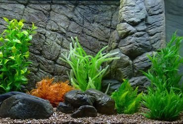 Aquarium Kunstpflanze Mini Dekoration 8-14 cm Nr. 208 – Bild 2