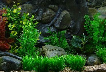 Aquarium Kunstpflanze Mittel Dekoration 26-32 cm Nr. 410 – Bild 2