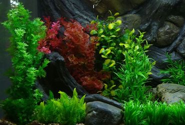 Aquarium Kunstpflanze Mittel Dekoration 26-32 cm Nr. 412 – Bild 2