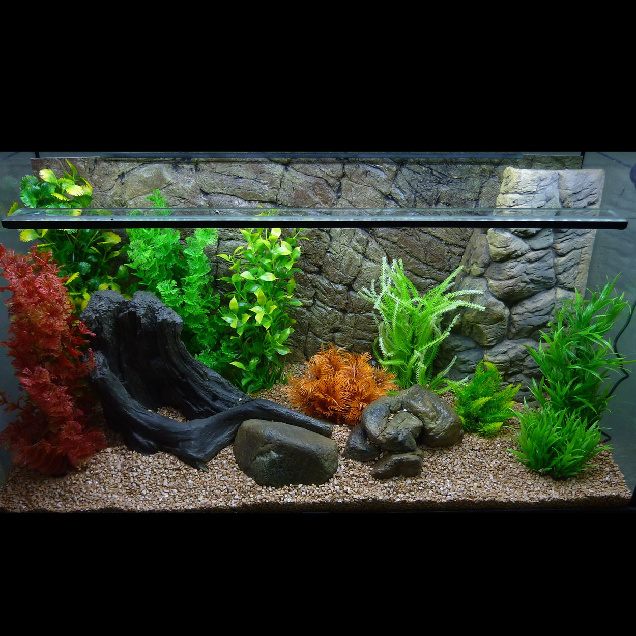 3d aquarium r ckwand f r vision 450 sd line fif aquaristik. Black Bedroom Furniture Sets. Home Design Ideas