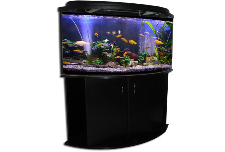 eck aquarium kombination 87x87x61 cm 350 l aquaristik welt aquarium kombination. Black Bedroom Furniture Sets. Home Design Ideas