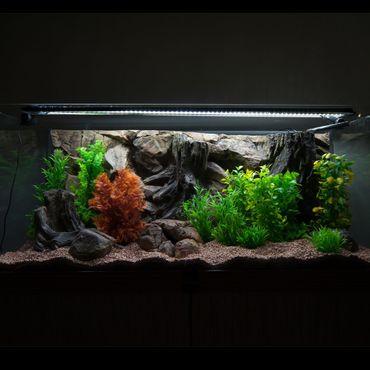 FIF 3d Rückwand 200x80 cm Aquarium Terrarium K-Line – Bild 3