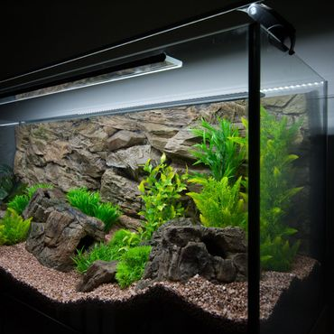 3d Aquarium Rückwand 130x60 cm S-Line zweiteilig FIF – Bild 4