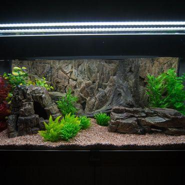 3d Aquarium Rückwand 130x60 cm O-Line zweiteilig FIF – Bild 3