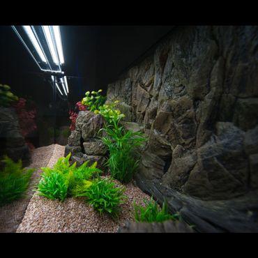 3d Aquarium Rückwand 130x60 cm O-Line zweiteilig FIF – Bild 4